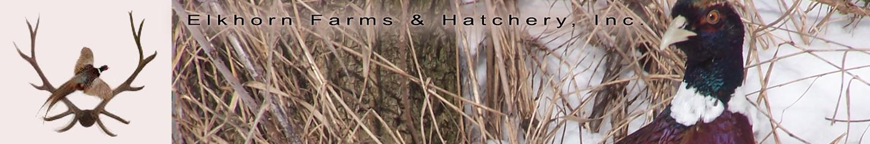Elkhorn Farms & Hatchery